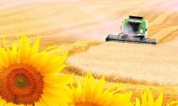 Spoločná poľnohospodárska politika – obrovské plytvanie zdrojmi