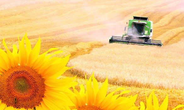 Spoločná poľnohospodárska politika - plytvanie zdrojmi