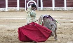 Spoločná poľnohospodárska politika EÚ dotuje aj býčie zápasy