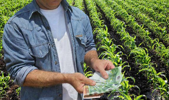 Spoločná poľnohospodárska politika a kampaň