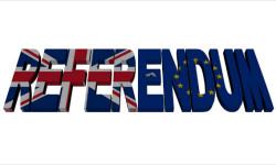 Vystúpenie Británie z EÚ a kampaň