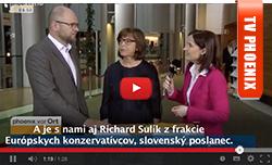 Dohoda medzi EÚ aTureckom - Sulík a Rebecca Harms