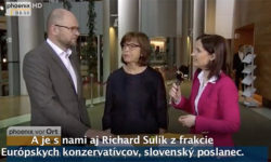 Dohoda medzi EÚ aTureckom - Richard Sulík pre TV Phoenix